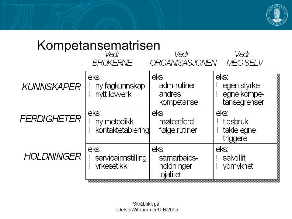 Skråblikk på ledelse/Withammer/UiB/2005 Kompetansematrisen