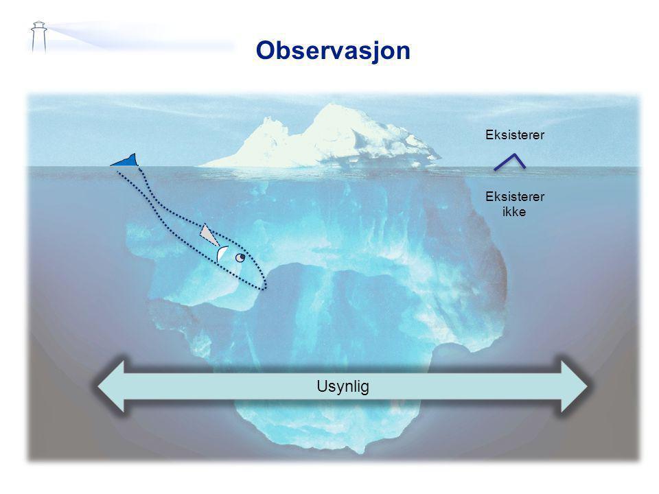 Observasjon Eksisterer Eksisterer ikke Usynlig