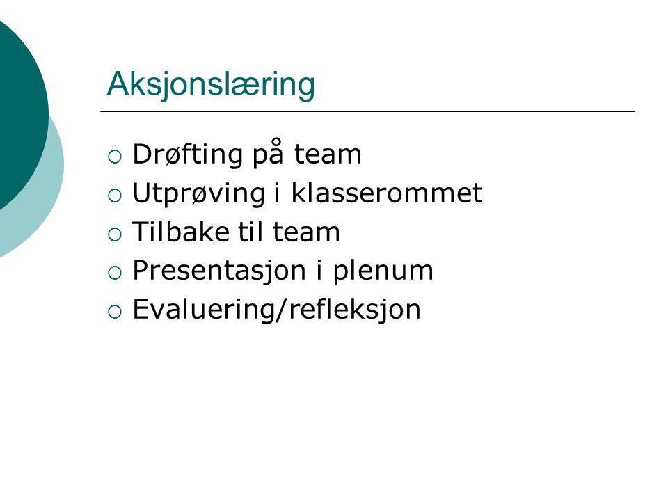 Aksjonslæring  Drøfting på team  Utprøving i klasserommet  Tilbake til team  Presentasjon i plenum  Evaluering/refleksjon