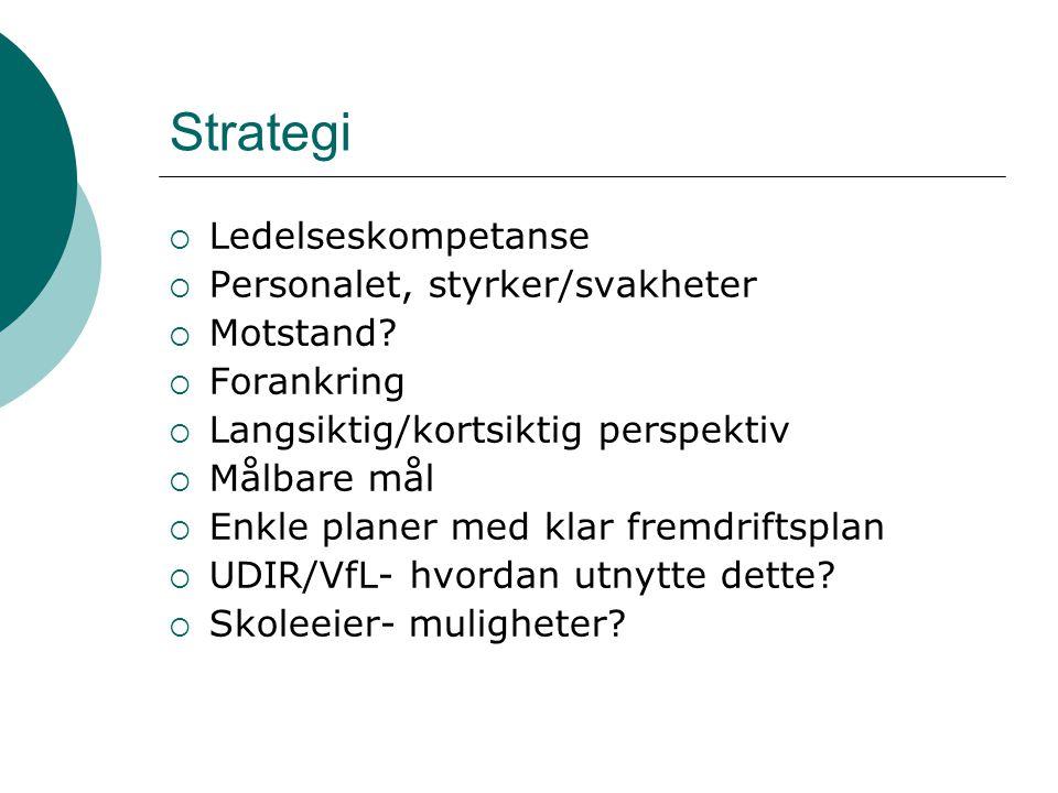 Strategi  Ledelseskompetanse  Personalet, styrker/svakheter  Motstand.