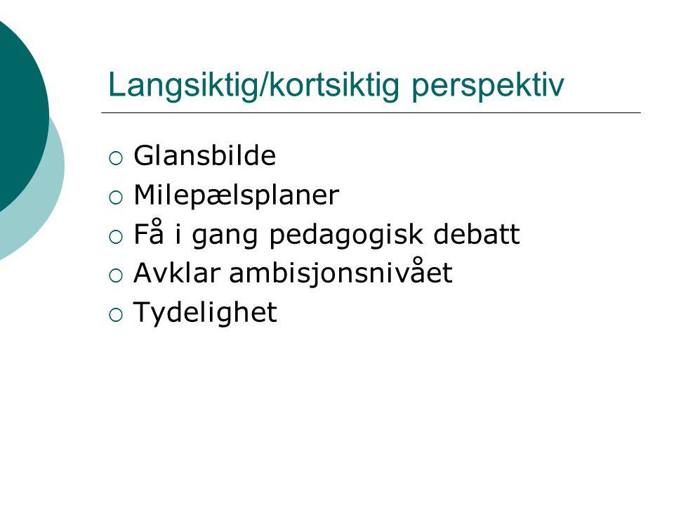Langsiktig/kortsiktig perspektiv  Glansbilde  Milepælsplaner  Få i gang pedagogisk debatt  Avklar ambisjonsnivået  Tydelighet