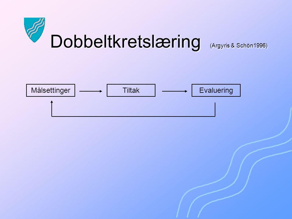 Enkeltkretslæring (Argyris & Schön1996) MålsettingerTiltakEvaluering