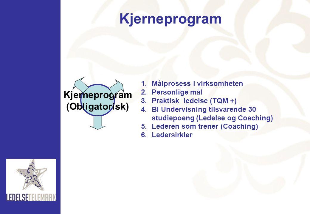 Kjerneprogram (Obligatorisk) 1.Målprosess i virksomheten 2.Personlige mål 3.Praktisk ledelse (TQM +) 4.BI Undervisning tilsvarende 30 studiepoeng (Led