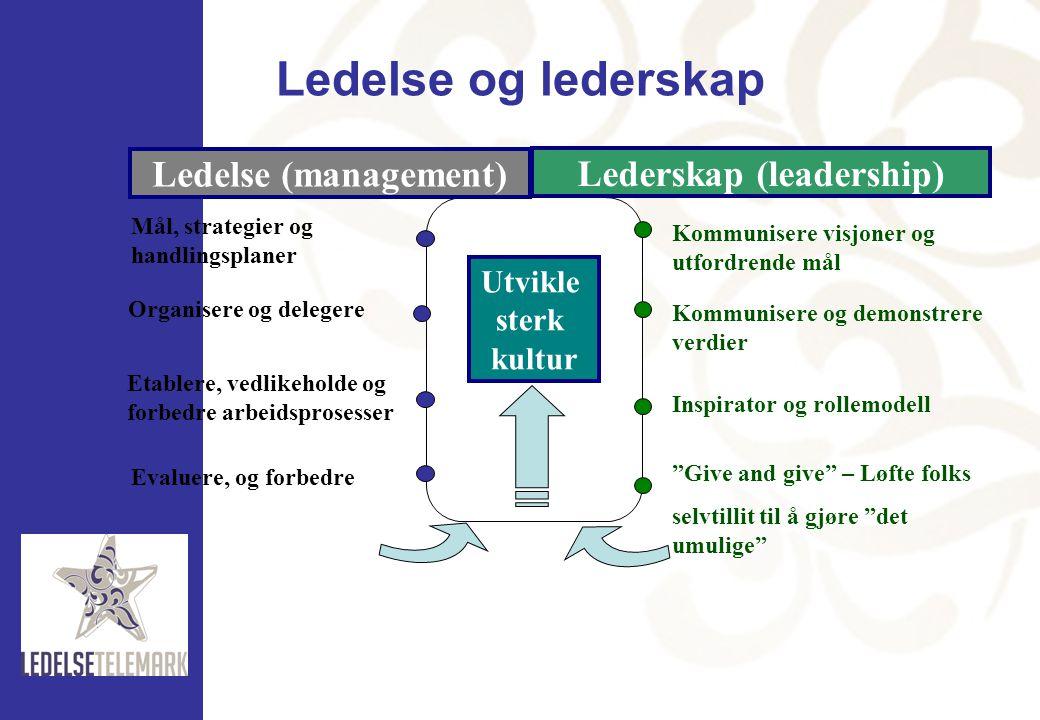 Kommunisere visjoner og utfordrende mål Kommunisere og demonstrere verdier Inspirator og rollemodell Mål, strategier og handlingsplaner Organisere og