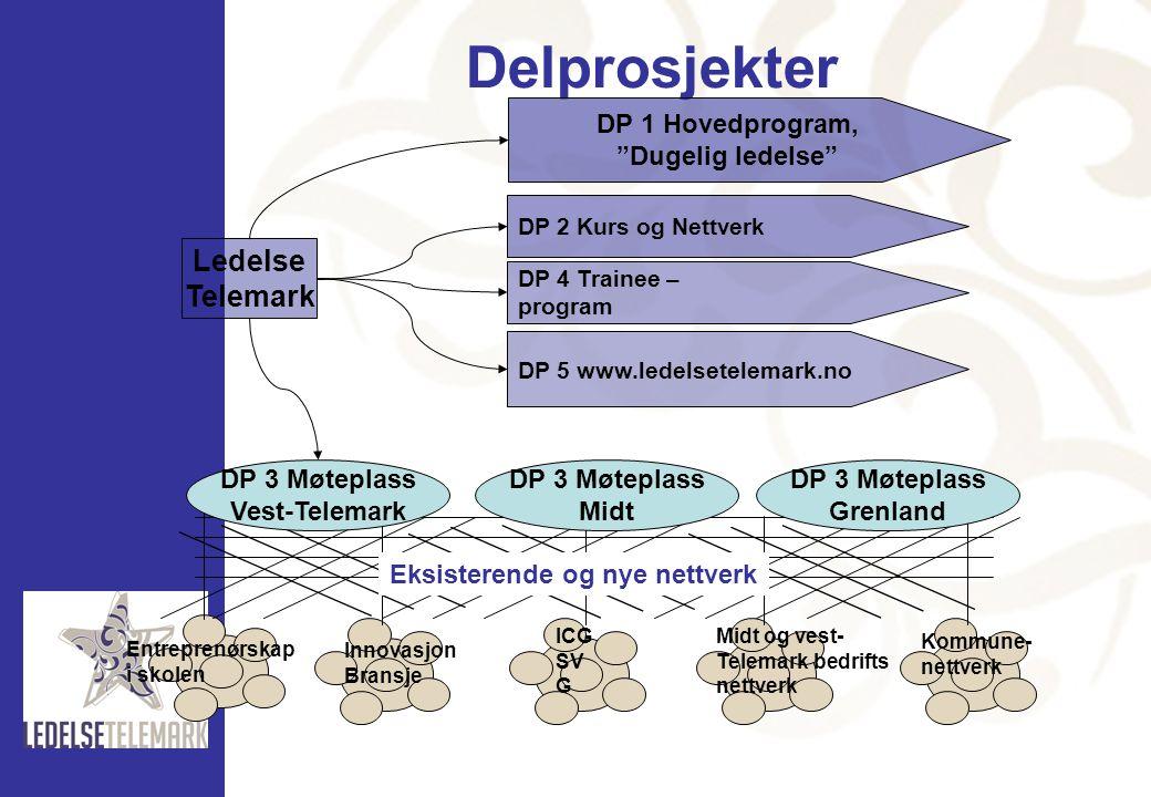 Delprosjekter Entreprenørskap i skolen Innovasjon Bransje ICG SV G Midt og vest- Telemark bedrifts nettverk Kommune- nettverk DP 3 Møteplass Vest-Tele