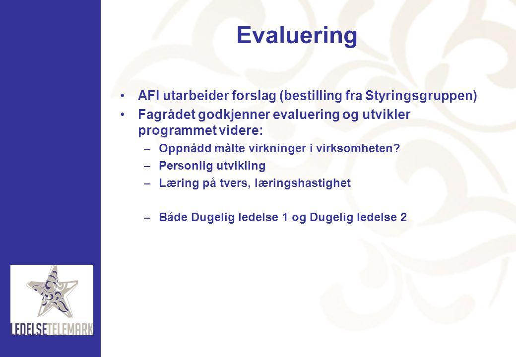 Evaluering •AFI utarbeider forslag (bestilling fra Styringsgruppen) •Fagrådet godkjenner evaluering og utvikler programmet videre: –Oppnådd målte virk
