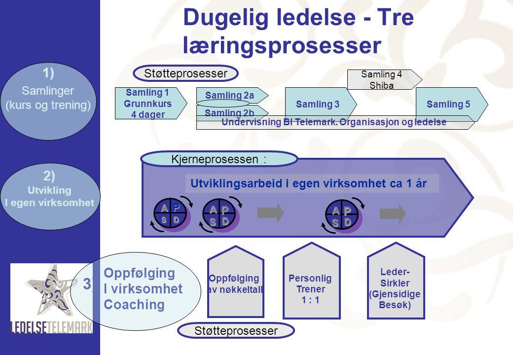 Dugelig ledelse - Tre læringsprosesser 2) Utvikling I egen virksomhet Utviklingsarbeid i egen virksomhet ca 1 år P D A S P D A S P D A S Kjerneprosess