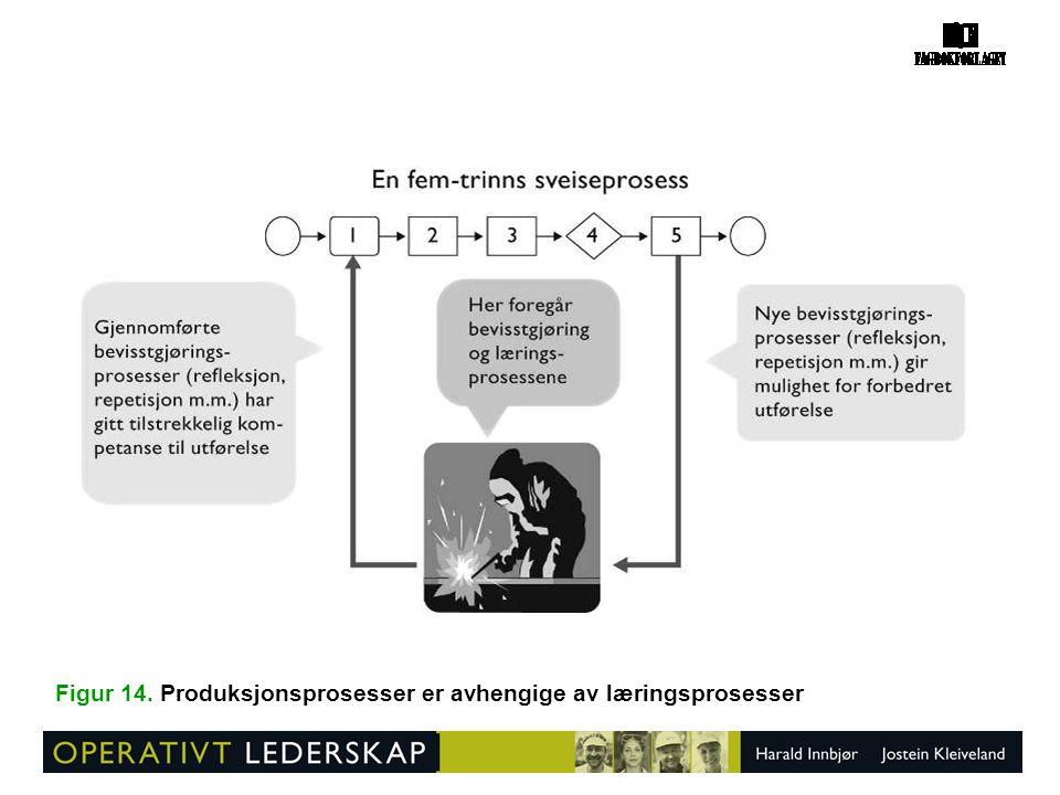 Figur 14. Produksjonsprosesser er avhengige av læringsprosesser
