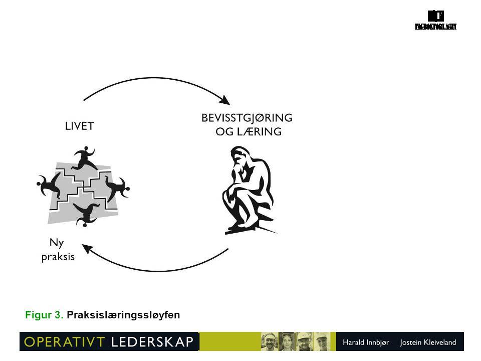 Figur 85. Virksomhetsutvikling etter liv-og-lære-modellen