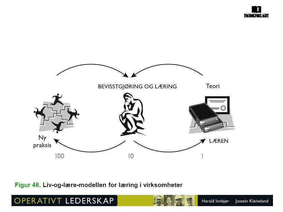 Figur 46. Liv-og-lære-modellen for læring i virksomheter