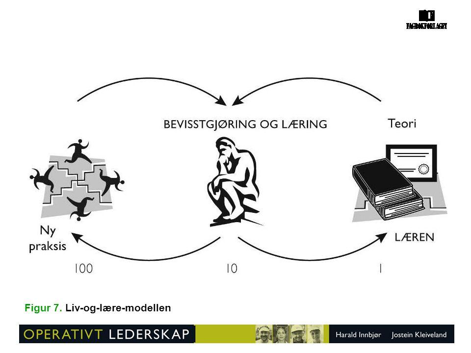 Figur 74. Jobbsamtale som grunnlag for læringstiltak