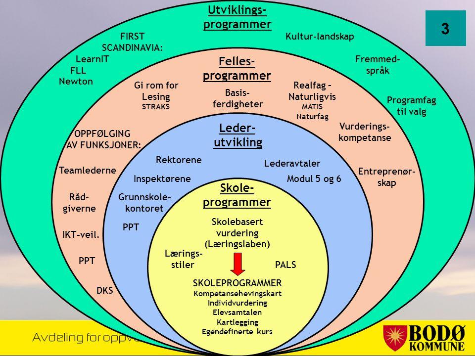 Gi rom for Lesing STRAKS DKS Felles- programmer Skole- programmer Utviklings- programmer Råd- giverne IKT-veil. PPT Lærings- stiler Kultur-landskap Re