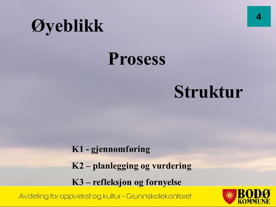 Øyeblikk Prosess Struktur K1 - gjennomføring K2 – planlegging og vurdering K3 – refleksjon og fornyelse 4