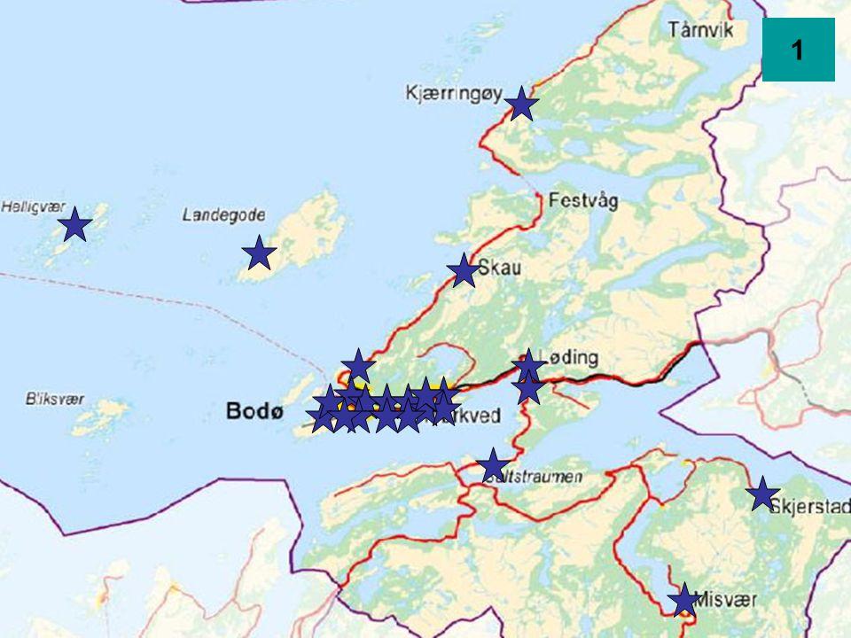 Kartlegging av opplæringen i Bodø kommune Resultater fra LæringsLABENs vurderingsopplegg bygd på personal- og elevundersøkelse våren 2006 4