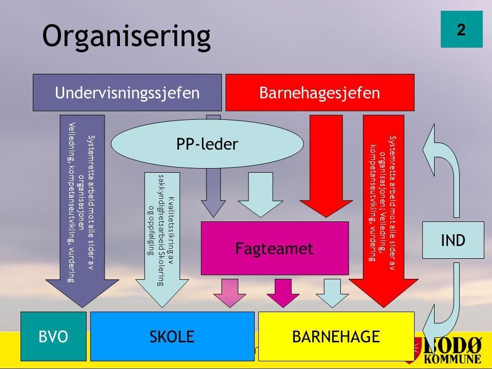 Organisering BVOBARNEHAGESKOLE Undervisningssjefen Systemretta arbeid mot alle sider av organisasjonen Veiledning, kompetanseutvikling, vurdering PP-l