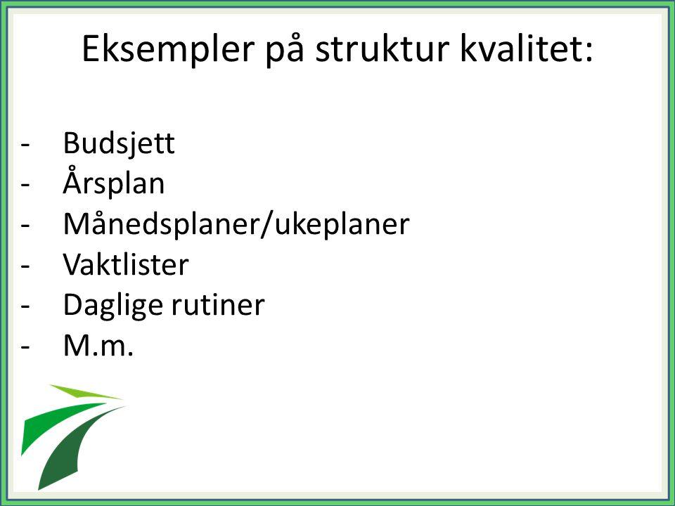 Eksempler på struktur kvalitet: -Budsjett -Årsplan -Månedsplaner/ukeplaner -Vaktlister -Daglige rutiner -M.m.