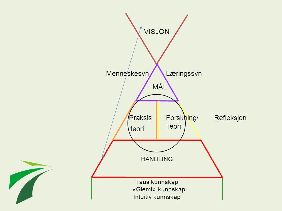 HANDLING MenneskesynLæringssyn MÅL Forskning/ Teori teori Praksis VISJON Taus kunnskap «Glemt» kunnskap Intuitiv kunnskap Refleksjon
