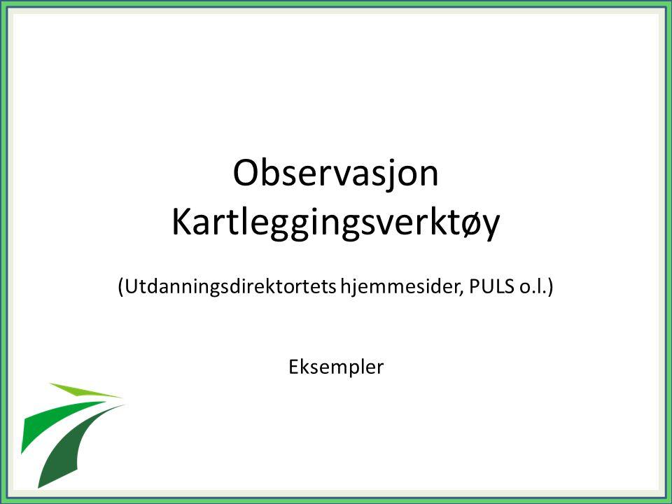Observasjon Kartleggingsverktøy (Utdanningsdirektortets hjemmesider, PULS o.l.) Eksempler (Det er også mulig å benytte Utdanningsdirektoratets ståsted
