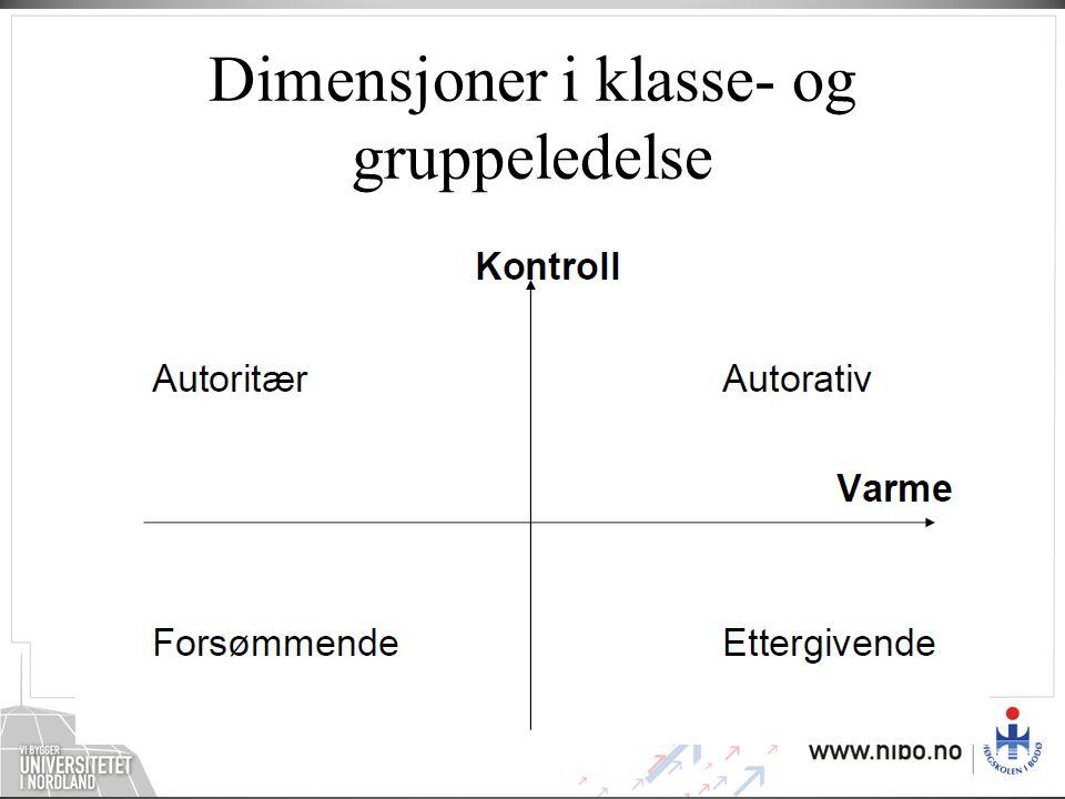 Dimensjoner i klasse- og gruppeledelse