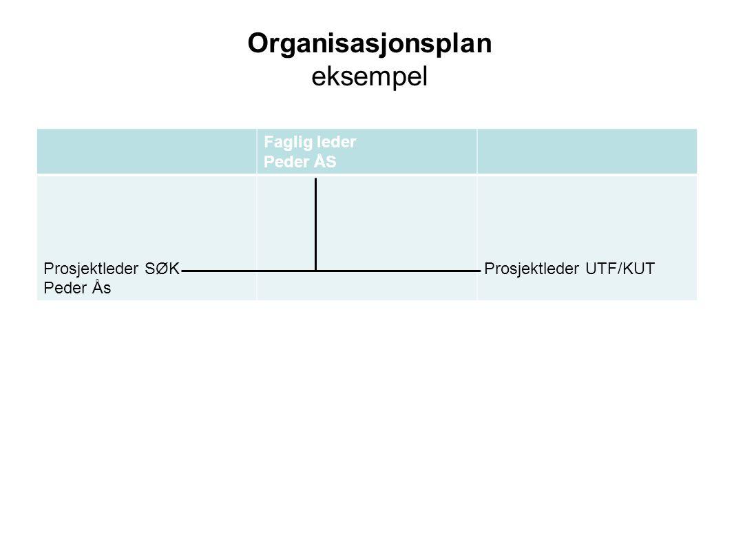 Organisasjonsplan eksempel Faglig leder Peder ÅS Prosjektleder SØK Peder Ås Prosjektleder UTF/KUT