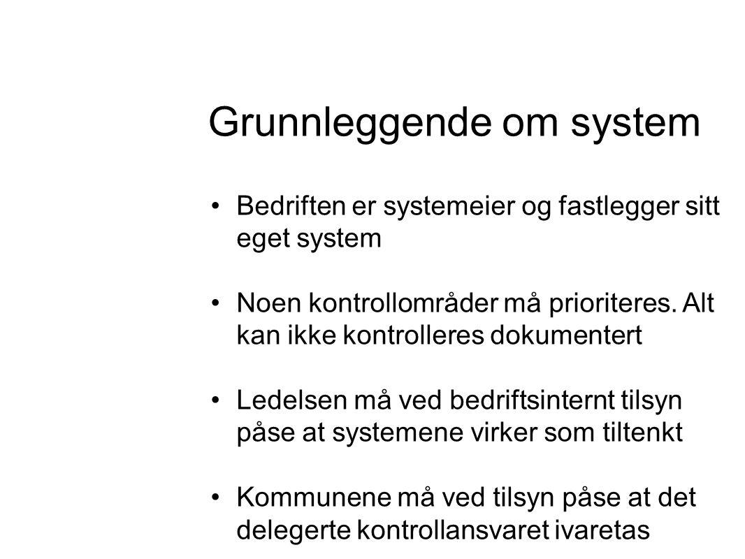 Grunnleggende om system •Bedriften er systemeier og fastlegger sitt eget system •Noen kontrollområder må prioriteres.