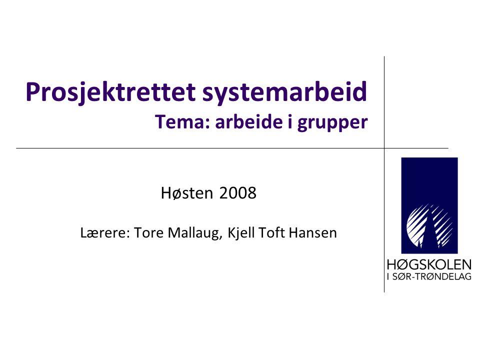 Prosjektrettet systemarbeid Tema: arbeide i grupper Høsten 2008 Lærere: Tore Mallaug, Kjell Toft Hansen