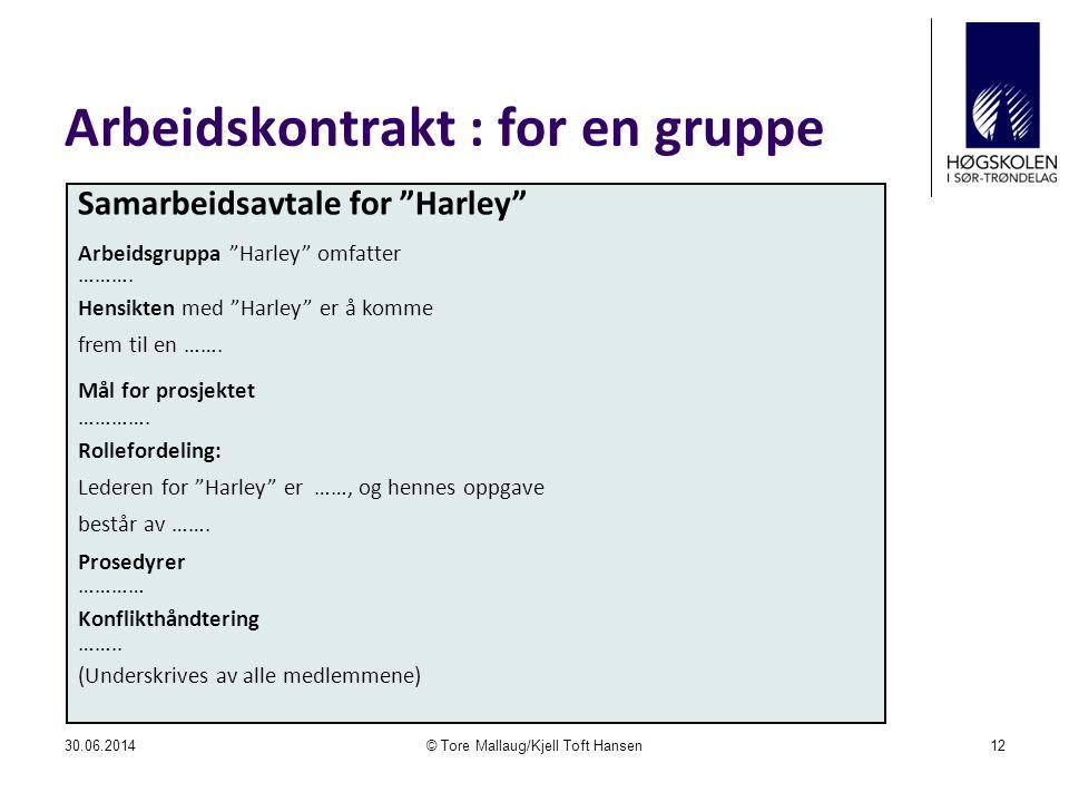 """Arbeidskontrakt : for en gruppe 30.06.2014© Tore Mallaug/Kjell Toft Hansen12 Samarbeidsavtale for """"Harley"""" Arbeidsgruppa """"Harley"""" omfatter ………. Hensik"""