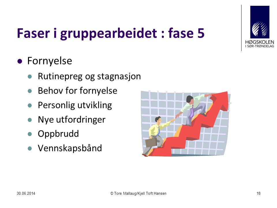 Faser i gruppearbeidet : fase 5  Fornyelse  Rutinepreg og stagnasjon  Behov for fornyelse  Personlig utvikling  Nye utfordringer  Oppbrudd  Ven