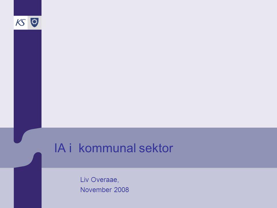 IA i kommunal sektor Liv Overaae, November 2008