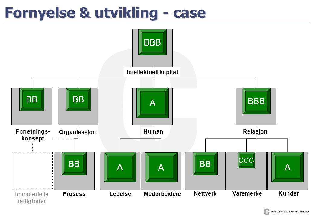 Fornyelse & utvikling - case A BBB+ A BBB BB ProsessLedelse Medarbeidere NettverkVaremerkeKunder Human Relasjon Organisasjon Forretnings- konsept Imma
