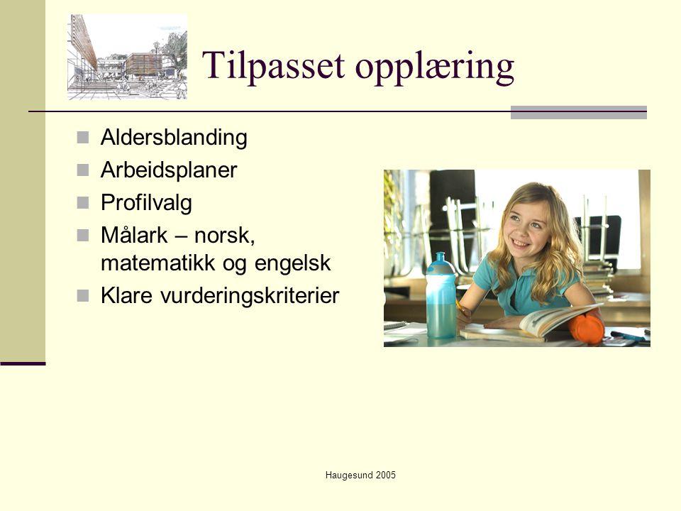 Haugesund 2005 Tilpasset opplæring  Aldersblanding  Arbeidsplaner  Profilvalg  Målark – norsk, matematikk og engelsk  Klare vurderingskriterier