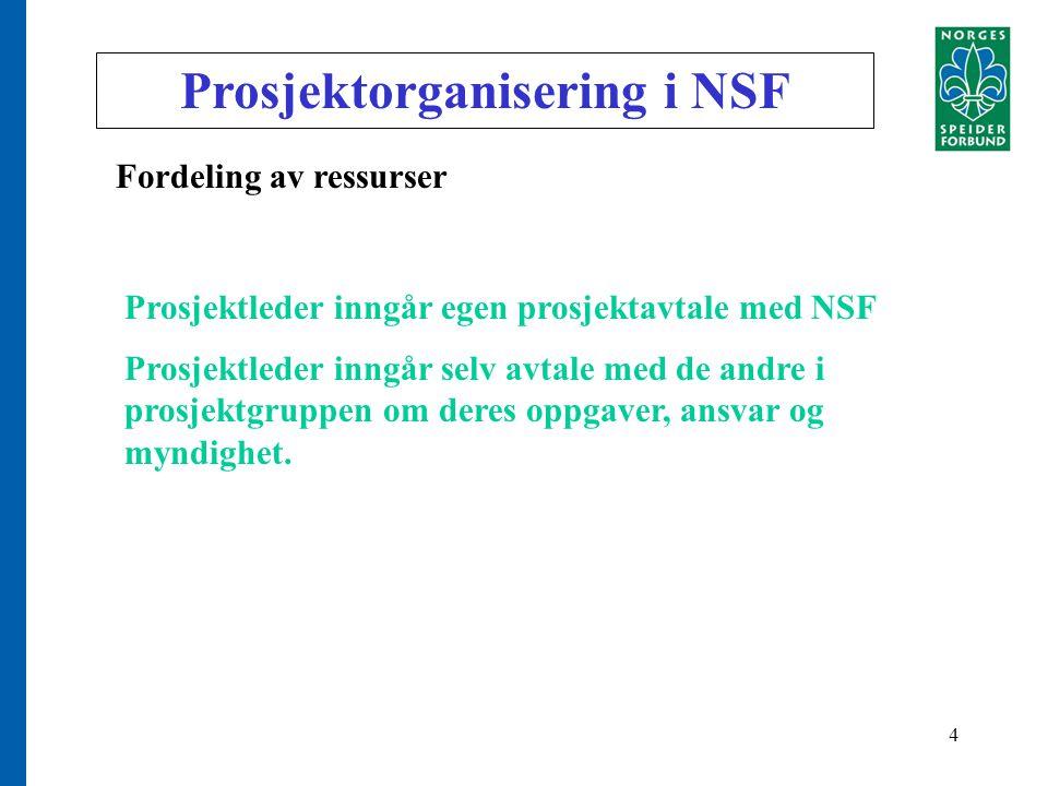 4 Prosjektorganisering i NSF Fordeling av ressurser Prosjektleder inngår egen prosjektavtale med NSF Prosjektleder inngår selv avtale med de andre i prosjektgruppen om deres oppgaver, ansvar og myndighet.