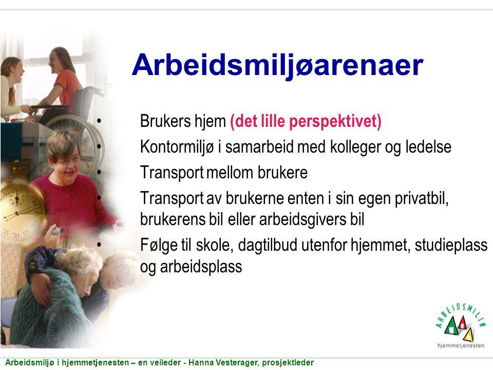 Arbeidsmiljøarenaer •Brukers hjem (det lille perspektivet) •Kontormiljø i samarbeid med kolleger og ledelse •Transport mellom brukere •Transport av br