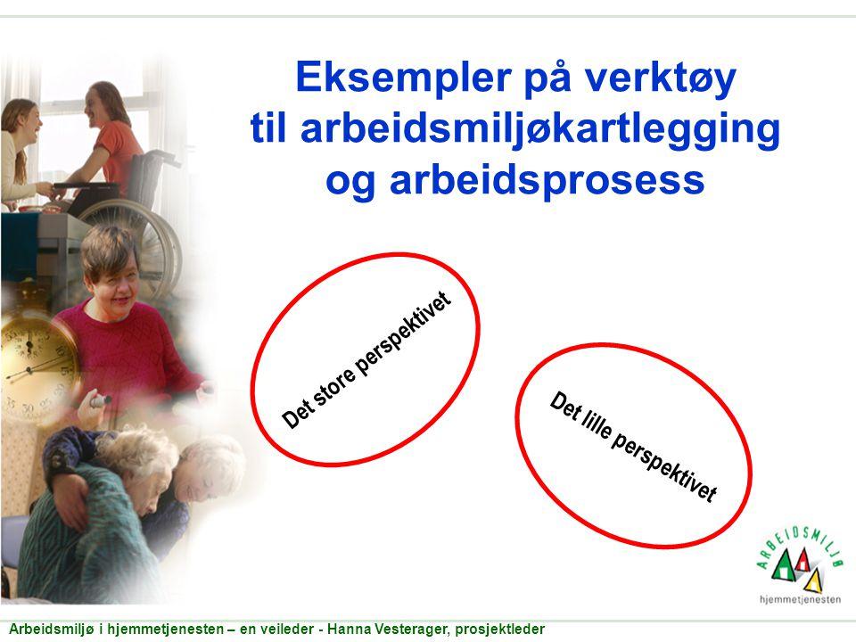 Eksempler på verktøy til arbeidsmiljøkartlegging og arbeidsprosess Det store perspektivet Arbeidsmiljø i hjemmetjenesten – en veileder - Hanna Vestera