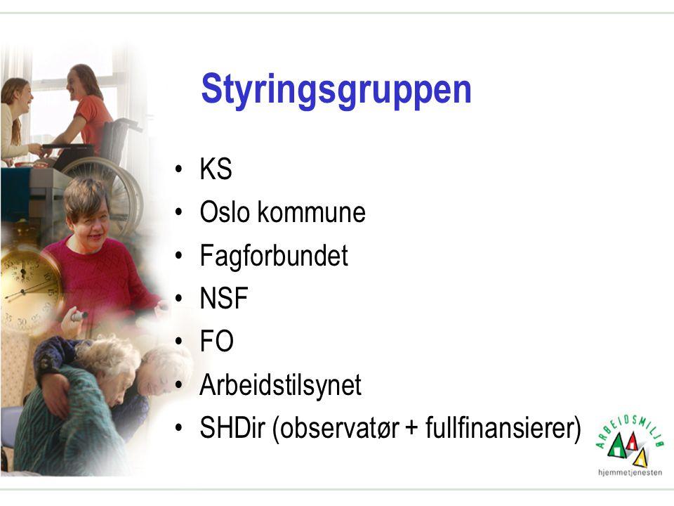 Styringsgruppen •KS •Oslo kommune •Fagforbundet •NSF •FO •Arbeidstilsynet •SHDir (observatør + fullfinansierer)