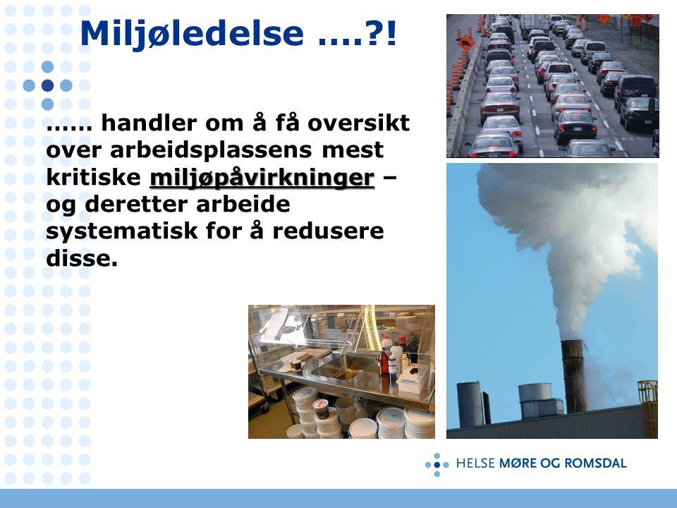 Miljøledelse …. .