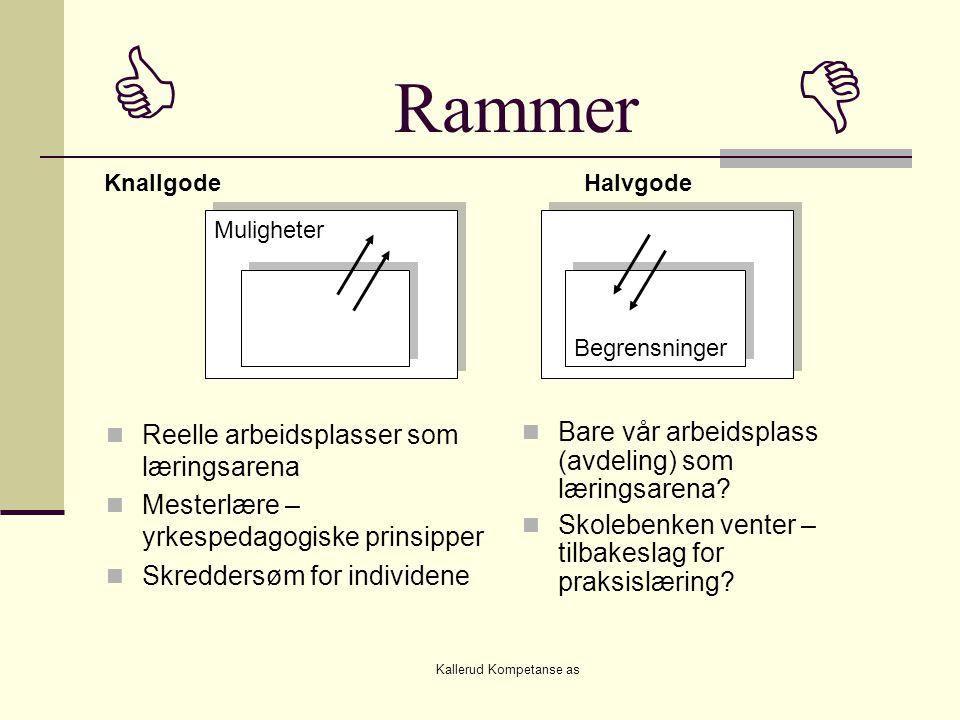 Kallerud Kompetanse as  Rammer   Reelle arbeidsplasser som læringsarena  Mesterlære – yrkespedagogiske prinsipper  Skreddersøm for individene  Bare vår arbeidsplass (avdeling) som læringsarena.
