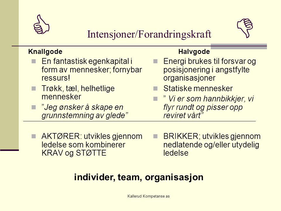 Kallerud Kompetanse as  Intensjoner/Forandringskraft   En fantastisk egenkapital i form av mennesker; fornybar ressurs.