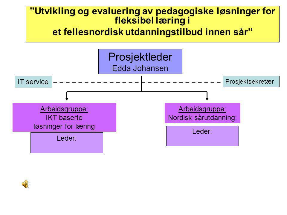 """Prosjektleder Edda Johansen """"Utvikling og evaluering av pedagogiske løsninger for fleksibel læring i et fellesnordisk utdanningstilbud innen sår"""" Lede"""