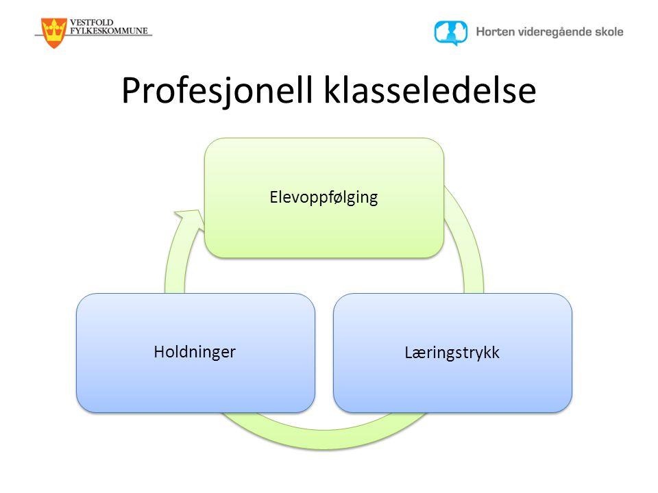 Profesjonell klasseledelse ElevoppfølgingLæringstrykkHoldninger