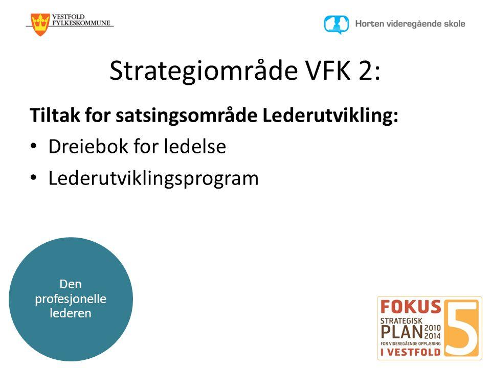 Den profesjonelle lederen Strategiområde VFK 2: Tiltak for satsingsområde Lederutvikling: • Dreiebok for ledelse • Lederutviklingsprogram