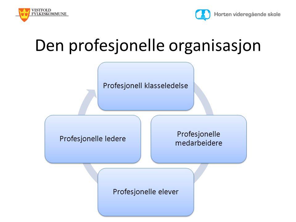 Den profesjonelle organisasjon Profesjonell klasseledelse Profesjonelle medarbeidere Profesjonelle eleverProfesjonelle ledere