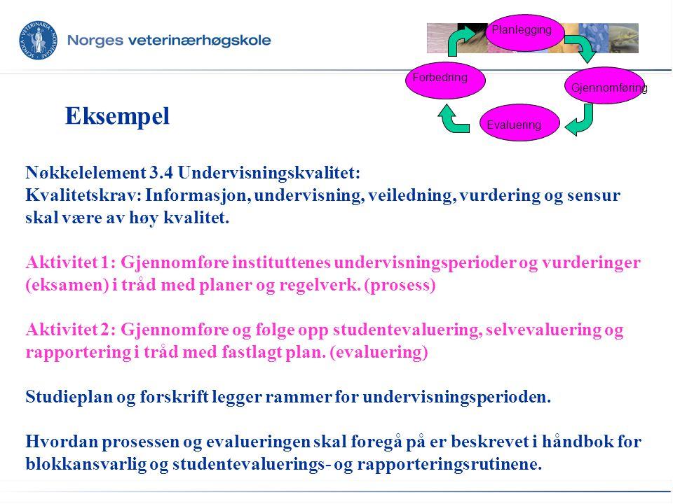 Eksempel Planlegging Evaluering Forbedring Gjennomføring Nøkkelelement 3.4 Undervisningskvalitet: Kvalitetskrav: Informasjon, undervisning, veiledning, vurdering og sensur skal være av høy kvalitet.