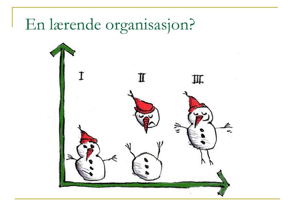 En lærende organisasjon?