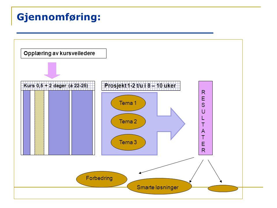Gjennomføring: _____________________________ Opplæring av kursveiledere Kurs 0,5 + 2 dager (á 22-25) Prosjekt 1-2 t/u i 8 – 10 uker Tema 1 Tema 2 Tema
