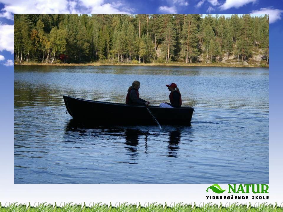 •Forvaltning av fiskeressursene •Registreringer av fiskebestanden •Utnytte fisken som matressurs •Fiske som et tilbud i utmarksturisme
