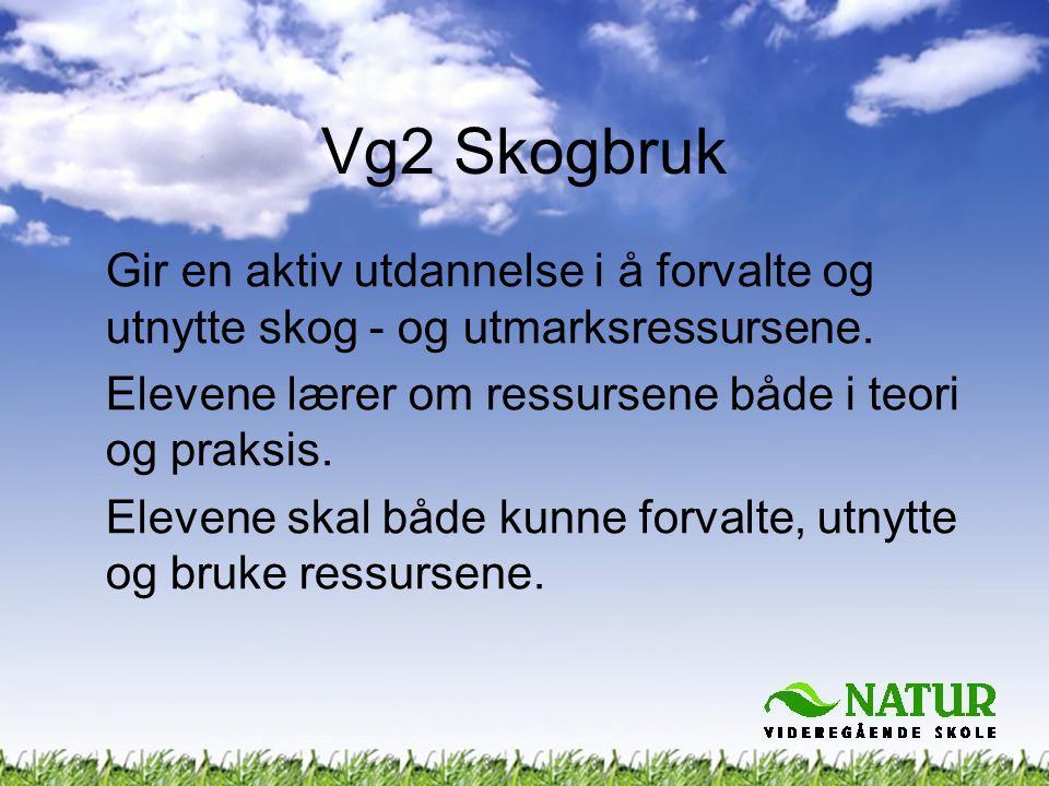 Vg2 Skogbruk Gir en aktiv utdannelse i å forvalte og utnytte skog - og utmarksressursene. Elevene lærer om ressursene både i teori og praksis. Elevene