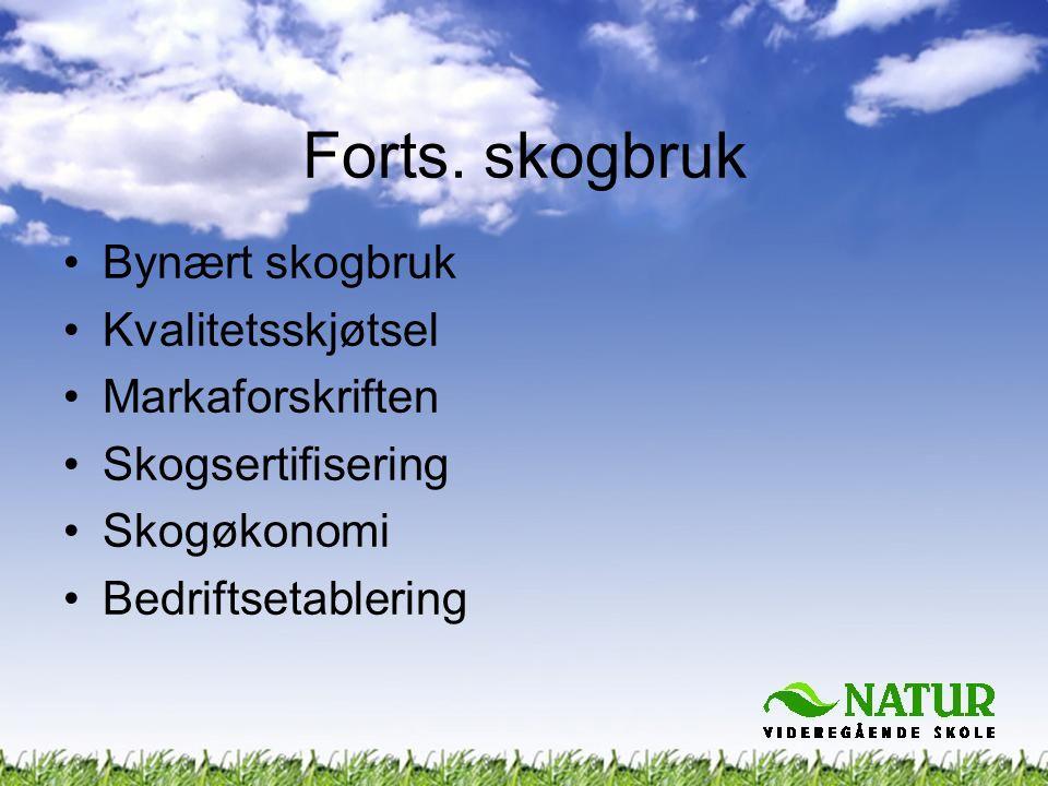 Forts. skogbruk •Bynært skogbruk •Kvalitetsskjøtsel •Markaforskriften •Skogsertifisering •Skogøkonomi •Bedriftsetablering