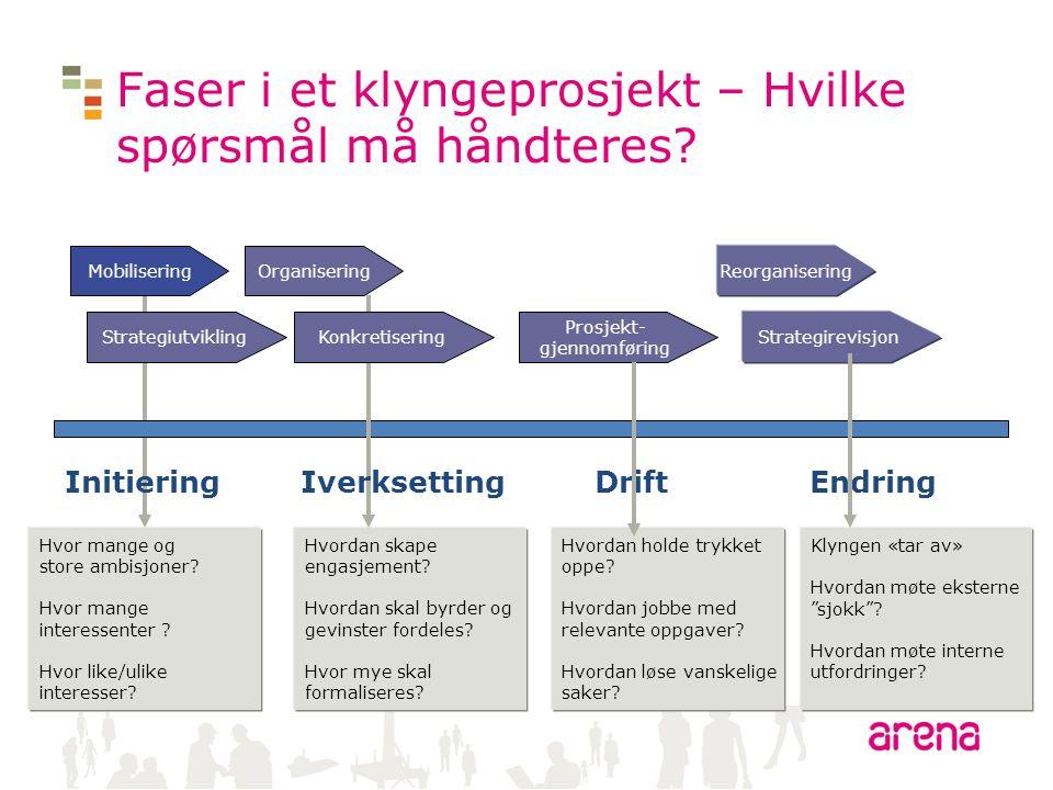 Faser i et klyngeprosjekt – Hvilke spørsmål må håndteres? Mobilisering Strategiutvikling Organisering Prosjekt- gjennomføring Strategirevisjon Reorgan
