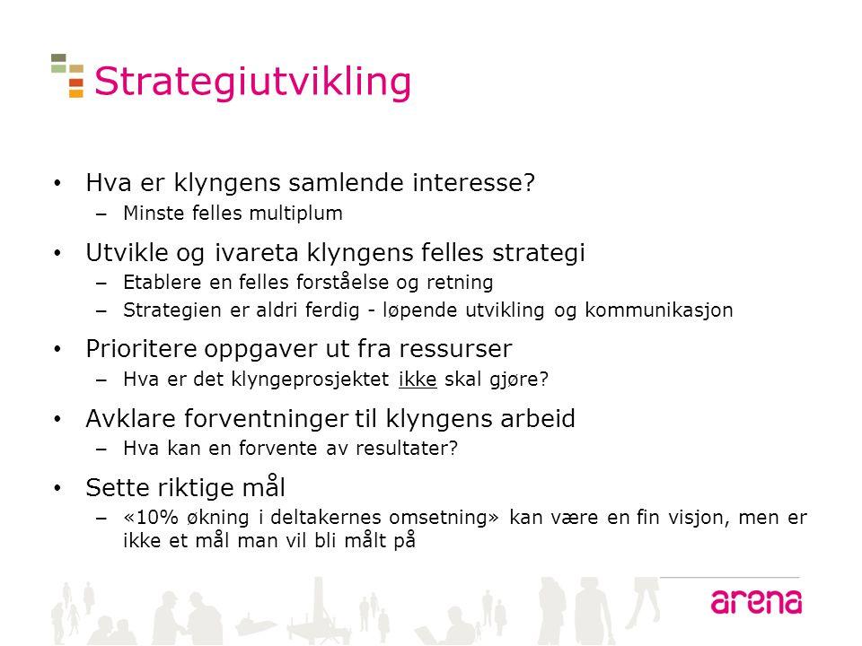 Strategiutvikling • Hva er klyngens samlende interesse? – Minste felles multiplum • Utvikle og ivareta klyngens felles strategi – Etablere en felles f